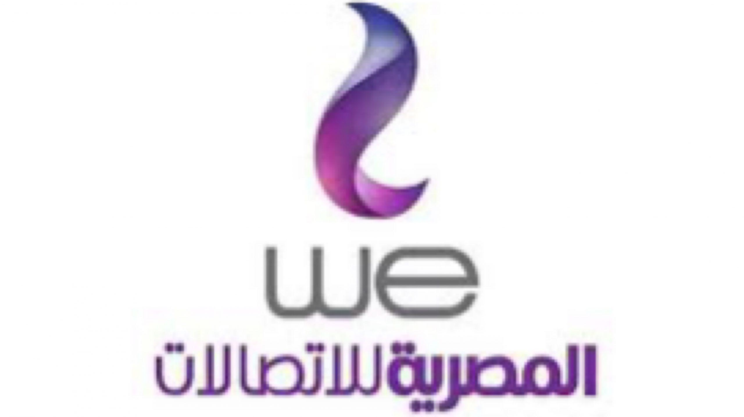 يمكنك الآن الاستعلام عن فاتورة التليفون الارضي من شركة المصرية الاتصالات