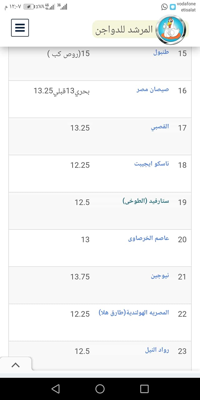 سعر الكتكوت الأبيض اليوم الأربعاء 27 أكتوبر 2021 بعد تراجع سعر الفراخ 7