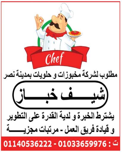 إعلانات وظائف جريدة الوسيط اليوم الاثنين 11/10/2021 2